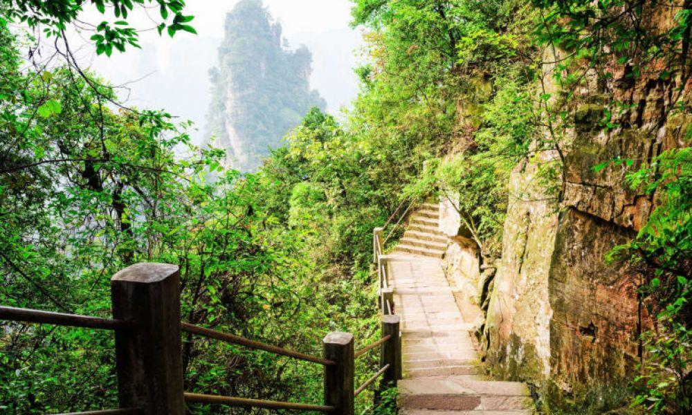 Sentier de la montagne Tianzi