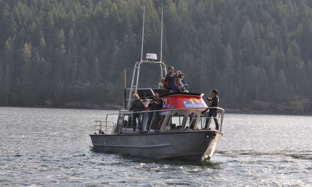 Le bateau couvert