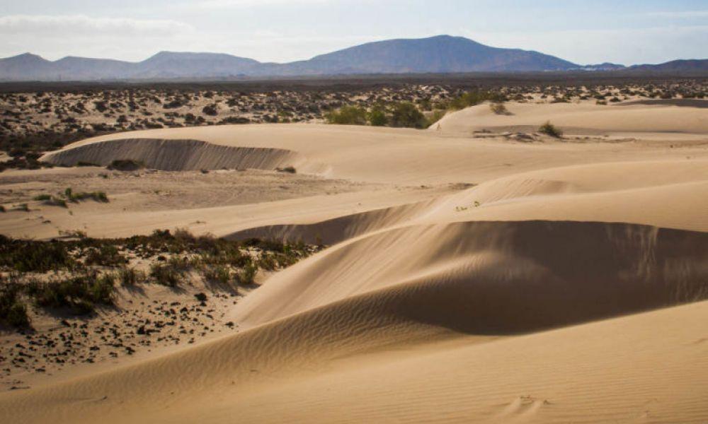 Les dunes de Corralejo