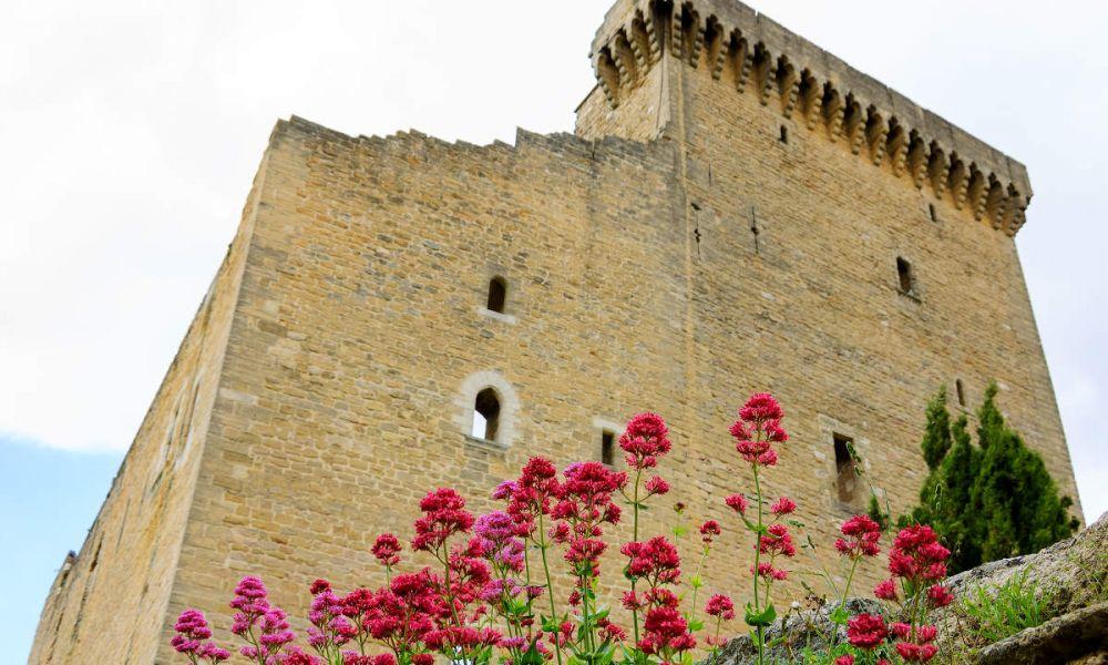 Château de Châteauneuf du Pape