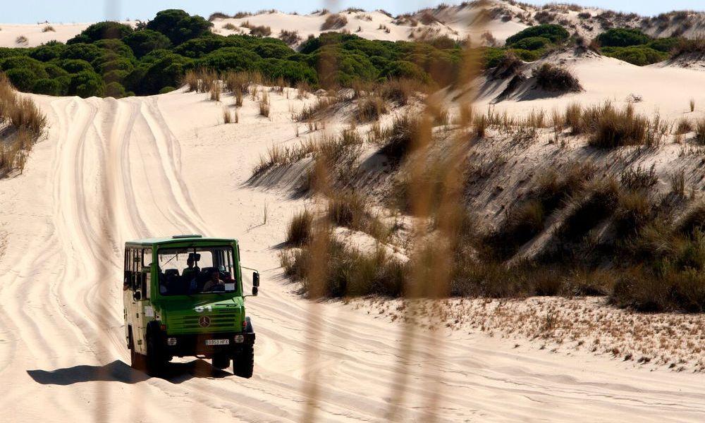 Dunes du Parc National de Doñana