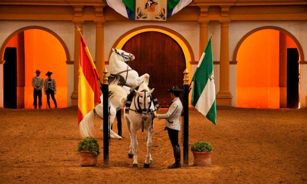 Spectacle « Comment dansent les chevaux andalous ».