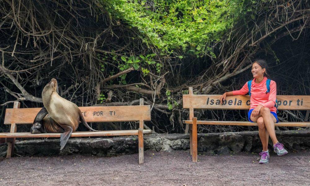 Visite de l'île Isabela