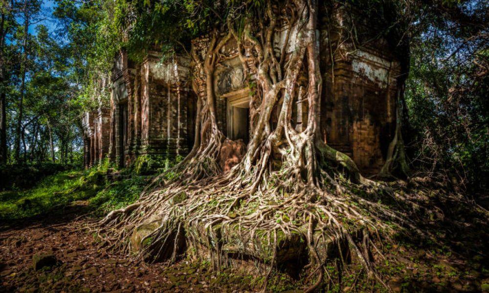 Les temples de Koh Ker