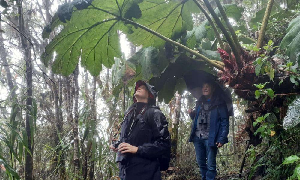 Visite de la réserve
