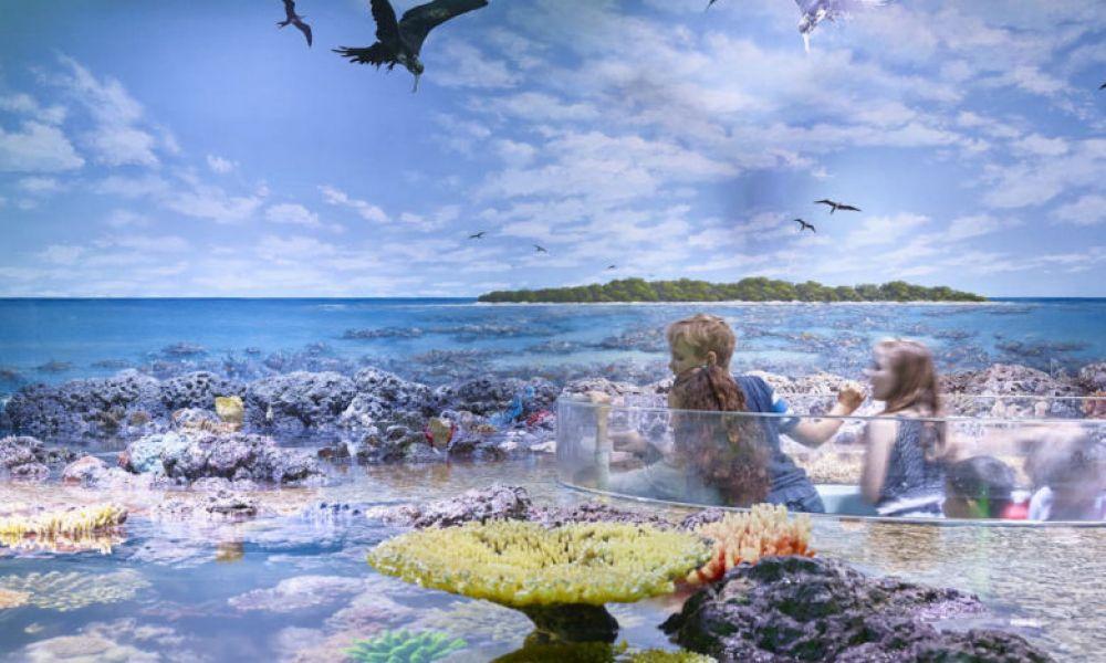 Découvrir les récifs de coraux