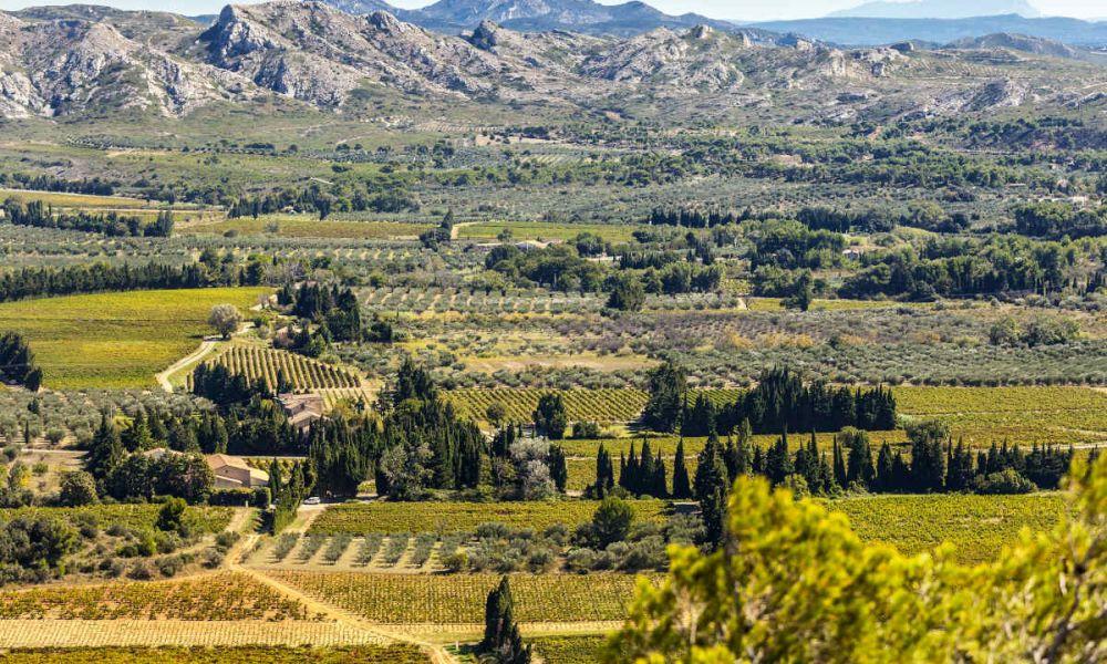 Contemplez la vue sur la Provence depuis les Baux