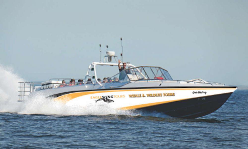 À bord du bateau de type vedette