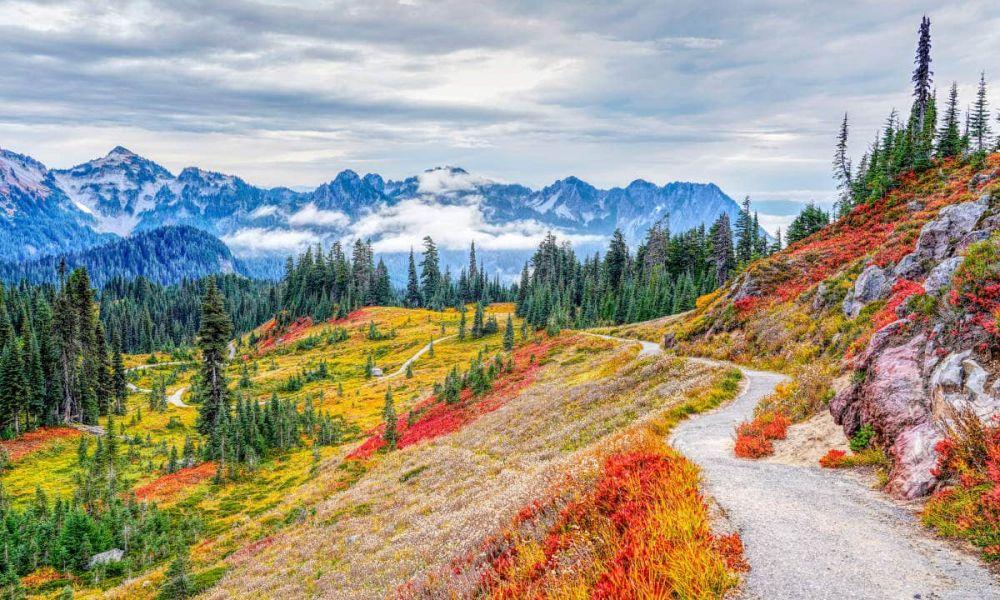Sentiers du Parc National Mont Rainier