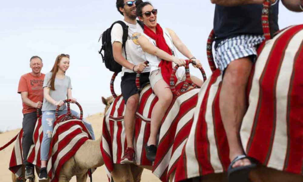 Balade en chameau
