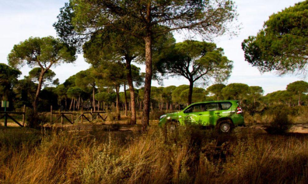 Paysages de Doñana