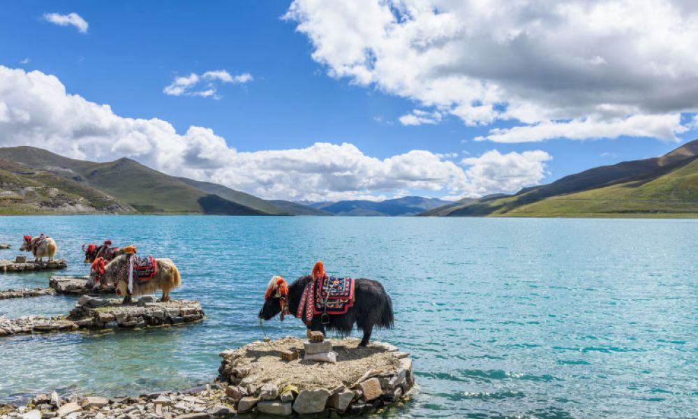 Lac Yamdrok