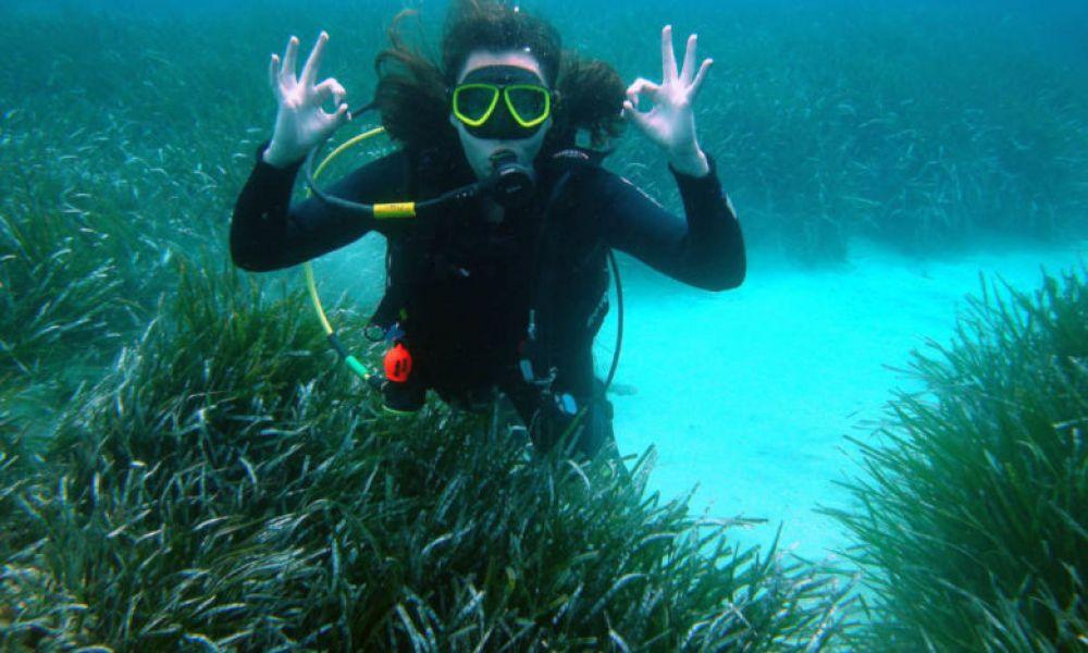 Pendant le cours de plongée