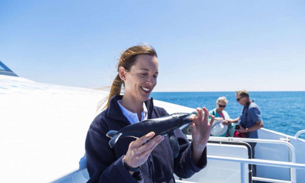 La guide dans le bateau